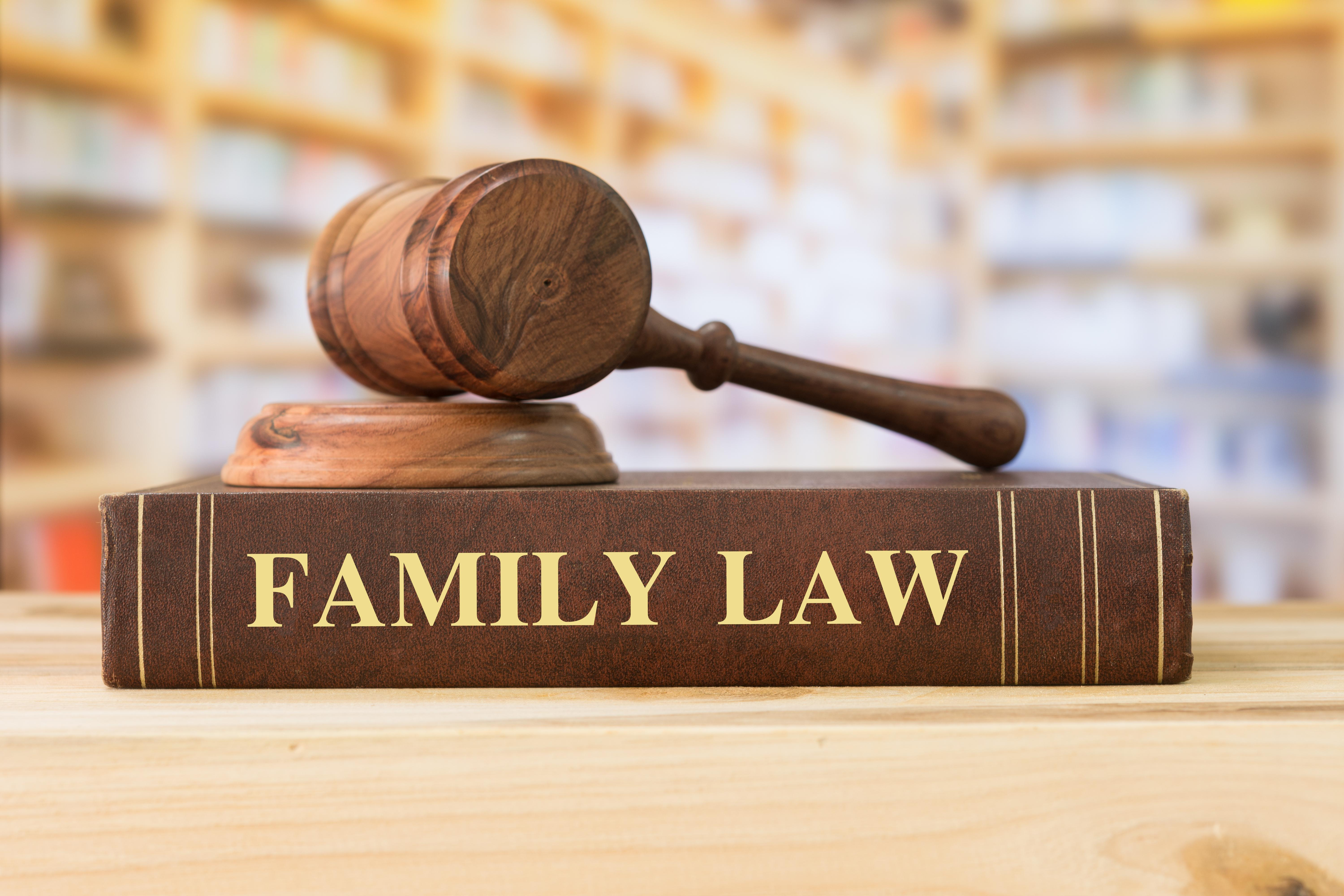 Family Law Gavel Book